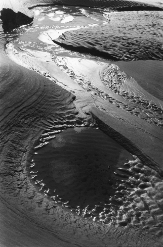 Camel Estuary 2Rock,Cornwall,sand pattern,abstract,gelatin silver print